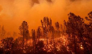 EEUU: 17 incendios en el estado de California dejaron ocho fallecidos