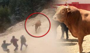 Trujillo: toro causa destrozos en mercado y cementerio de Huamachuco