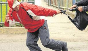 Observatorio de Criminalidad: más de 15 mil denuncias por robo en lo que va del año