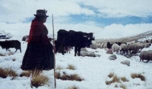 Declaran en emergencia distritos de siete regiones del país por heladas y nevadas