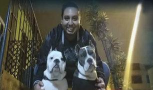 Comas: joven pide ayuda para encontrar a sus perros que fueron robados