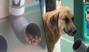 La Libertad: mototaxista es captado robando comida para perros de dispensador