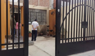 Lambayeque: vivienda afectada tras explosión de bomba molotov