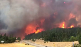 California: voraz incendio afectó el Bosque Nacional de Shasta-Trinity
