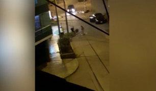 Los Olivos: delincuentes dejan grave a hombre que se resistió al robo