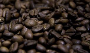 Junín: India y Rusia se muestran interesados en café peruano