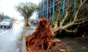 Japón: cancelan vuelos tras llegada de tifón Trami