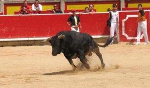 Áncash: Toro escapa de ruedo y hiere a dos personas