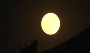 China lanzará para el año 2020 una 'luna artificial'