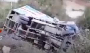 Cajamarca: bus con ganado cae a abismo y deja animales muertos