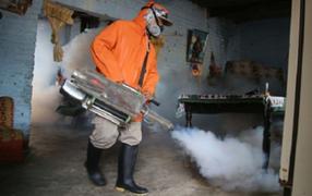 Dengue: epidemia mató a 31 personas y ha contagiado a casi 5500 desde el 2019