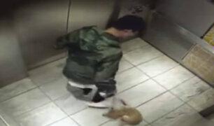 El Agustino: hombre golpea a perro dentro de un ascensor