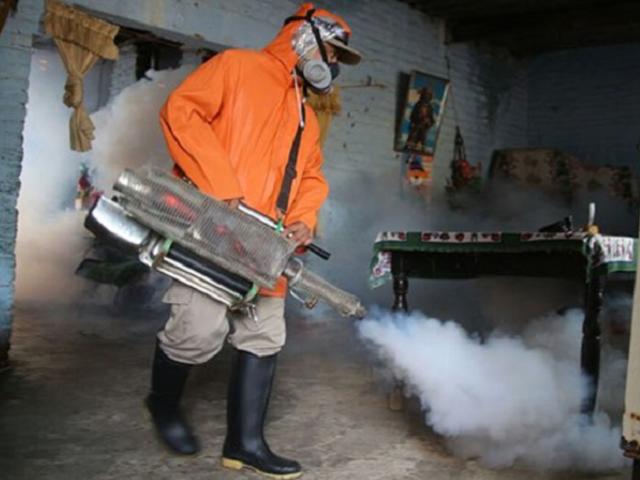 Dengue: Declaran emergencia sanitaria en Loreto, Madre de Dios y San Martín