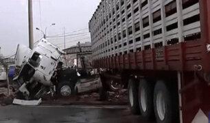 Investigan causas de despiste de trailer que obligó cerrar la Panamericana Norte