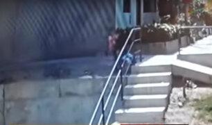 Falta de baranda de seguridad permitió que bebé cayera por pendiente de dos metros