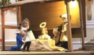 VIRAL: Oveja 'rapta' a Niño Jesús en pleno Nacimiento