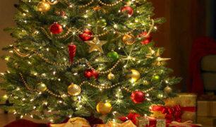 Verde, dorado y rojo: conoce el origen de los colores de Navidad
