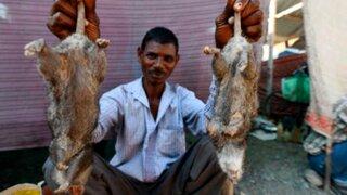 La rata, el ingrediente infaltable en las cenas de Año Nuevo en la India