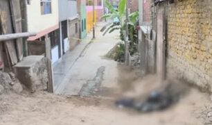 Los Olivos: sujeto hallado calcinado habría participado en crimen el año pasado