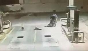 Perro justiciero evita robo a gasolinera en México