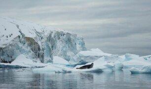 ¿Sabía usted que el hielo de la Antártida se derrite más rápido que hace 40 años?