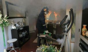 Inician fumigación de casas afectadas por aniegos en SJL