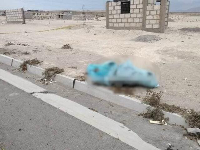 Horror en Arequipa: madre y su hijo de 10 años fueron hallados sin vida dentro de costales