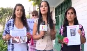 Denuncian mafia dedicada al robo de mascotas en Comas
