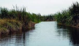 Los humedales y su importancia como solución natural frente al cambio climático