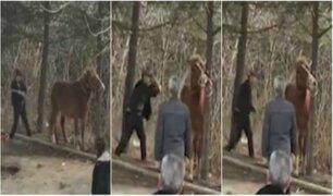 Anciano golpea brutalmente a caballo frente a turistas