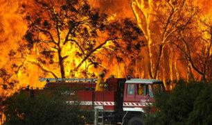 Incendios forestales siguen afectando más regiones de Chile