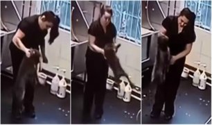Peluquera canina es captada maltratando a mascota