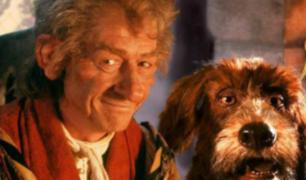 El narrador de cuentos: famosa serie regresa después de 30 años
