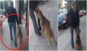VIDEO: hombre arrastra a perro por varios metros en plena vía pública