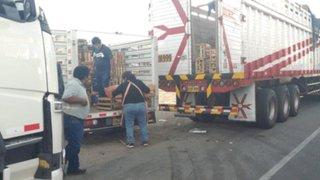 Precio del pollo y otros productos se incrementan en Arequipa por paro de camioneros