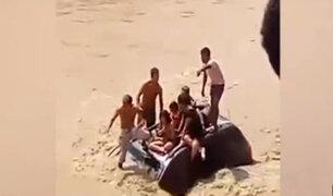 Ica: cámaras captan el preciso instante cuando auto cae a río