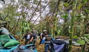Cusco: destruyen poza de maceración con casi 3 mil kilos de hojas de coca