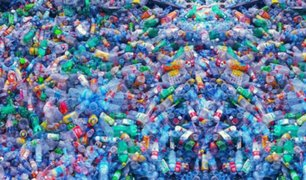 Estos son los cuatro productos naturales que pueden sustituir al plástico