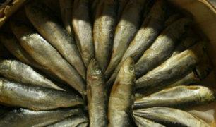 Promueven consumo de pescado por sus altos beneficios nutritivos