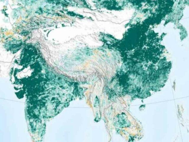 """NASA: la tierra """"es más verde"""" que hace 20 años gracias a China e India"""