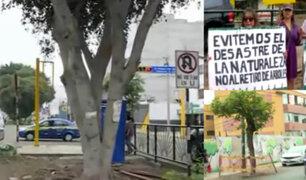 Surco: protestan por tala de árboles para ampliación de avenida Benavides