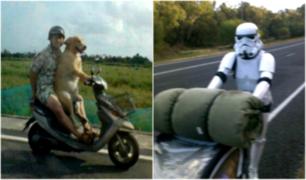 FOTOS: 10 cosas insólitas que no esperabas ver en la carretera