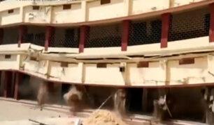 India: trabajadores de colegio salvan de morir tras desplome del recinto