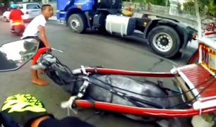 VIDEO: yegua se desploma tras ser obligada a arrastrar pesado carruaje