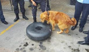 Surco: incautan 32 kilos de cocaína camuflada en tanque de camioneta