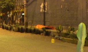 SMP: sujetos armados asesinan a balazos a un hombre