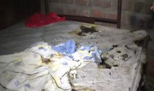 Huaycán: joven acusa a expareja de intentar matarla prendiendo fuego a su vivienda