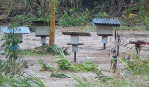 Oxapampa: desborde de río Huancabamba destruyó carretera