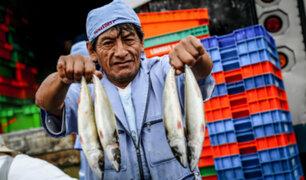 """Semana Santa: """"Mi pescadería"""" venderá tres toneladas de pescado a bajos precios"""