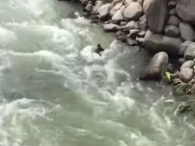 Chosica: hombre murió tras ser arrastrado por el río Rímac